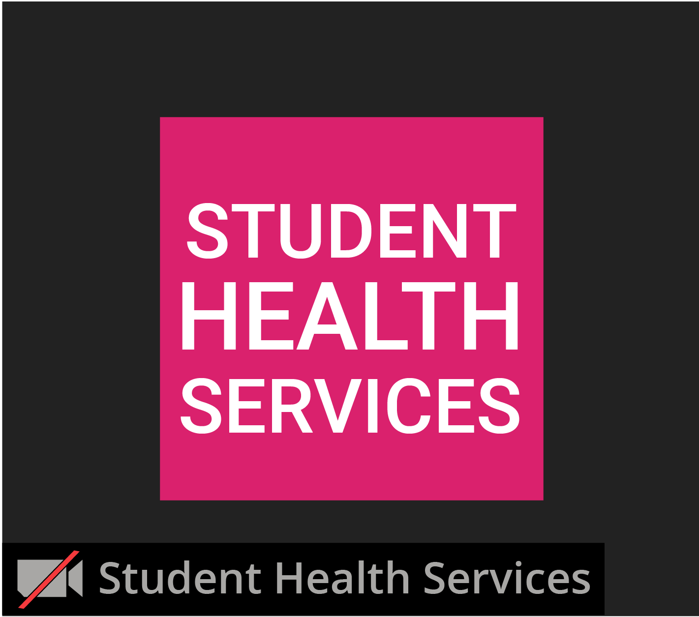 landing-pg-zoom_student-health-services-window.png